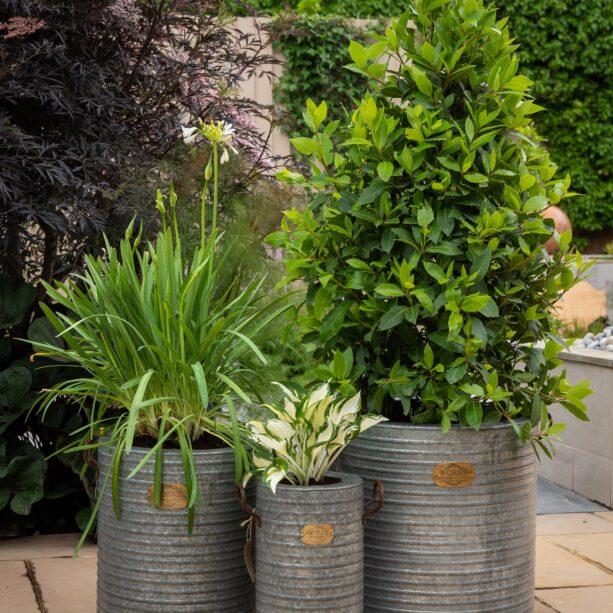 Burnham vintage planter
