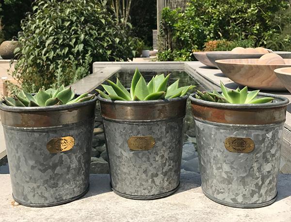 Croxton Candle Pots