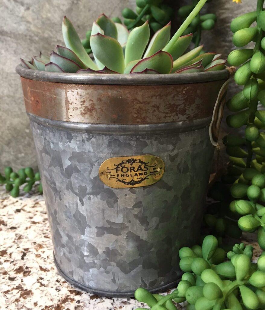 Croxton Vintage Pot - Set Of Three