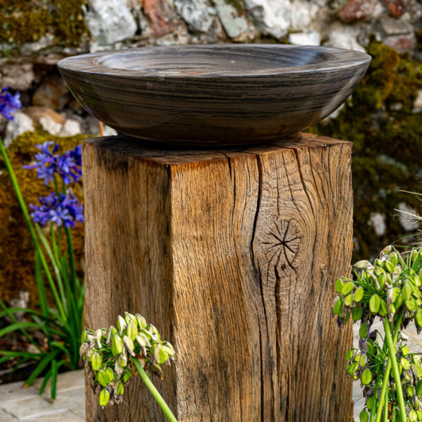Acorn Shark Birdbath on Weathered Oak Plinth
