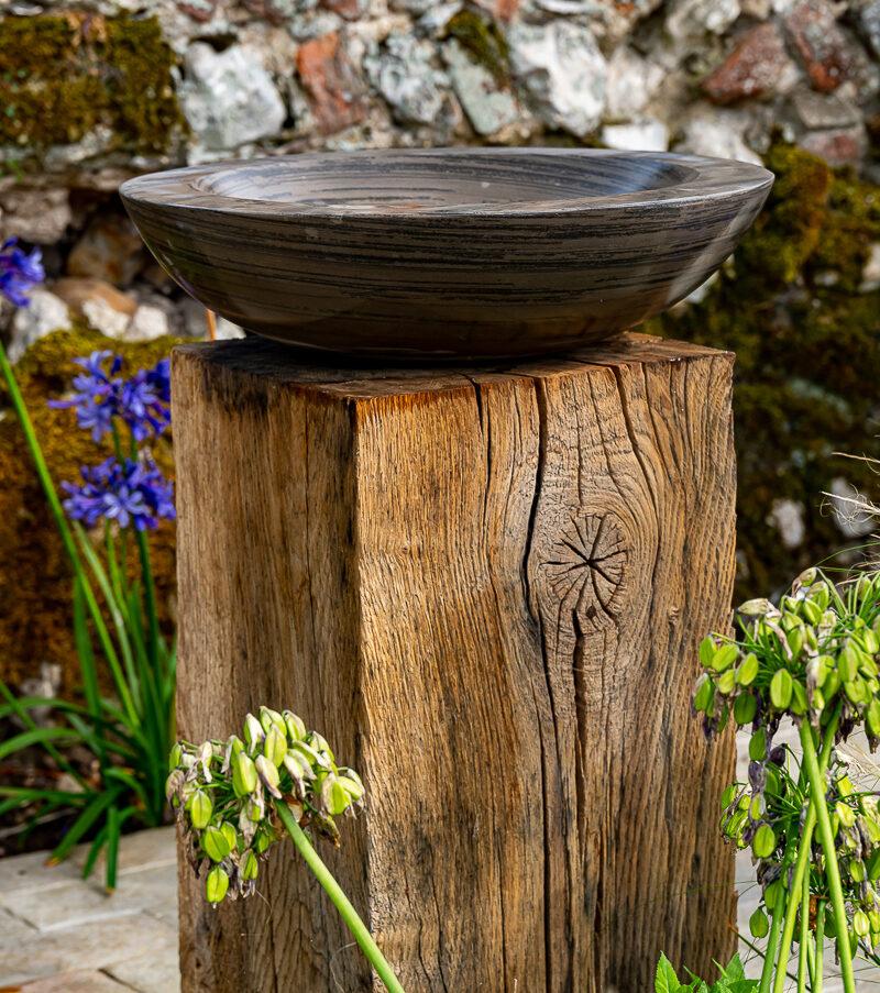 Acorn Shark Birdbath on Weathered Oak Plinth