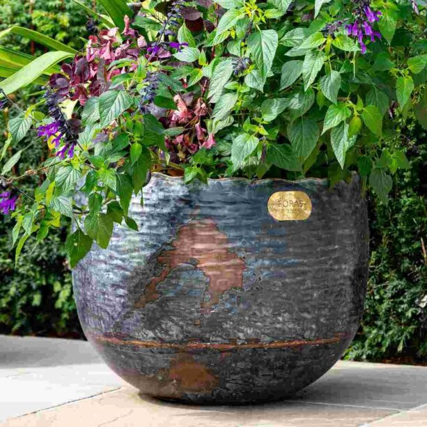 Copper Beech Planter
