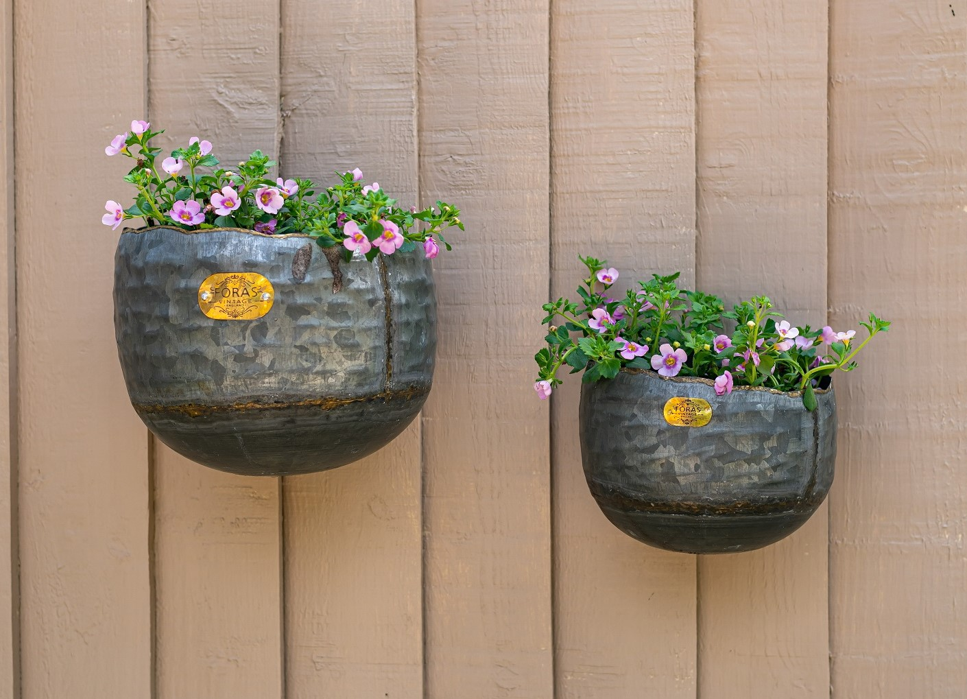 Myrtle wall planters