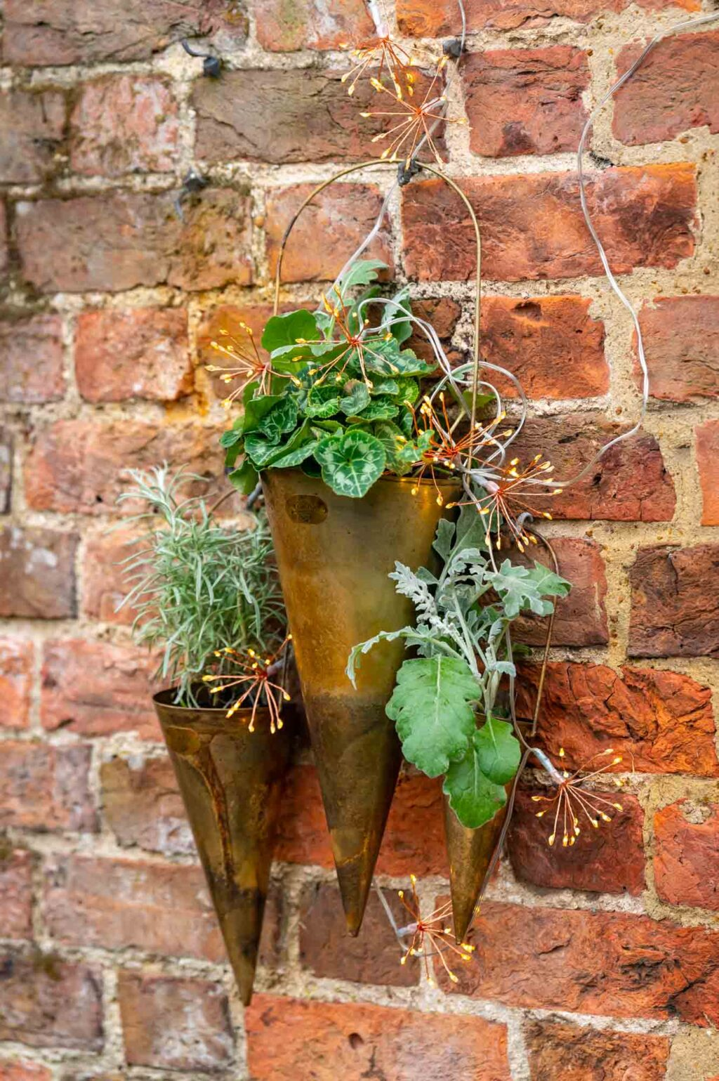 Hornbeam Planters