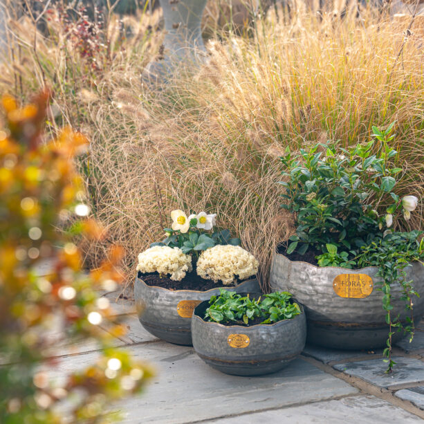 Opus vintage planter