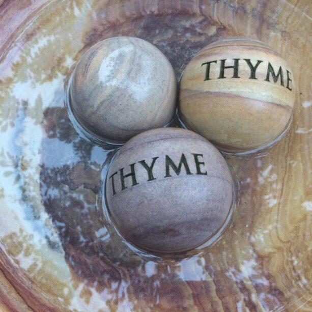 Thyme 10cm