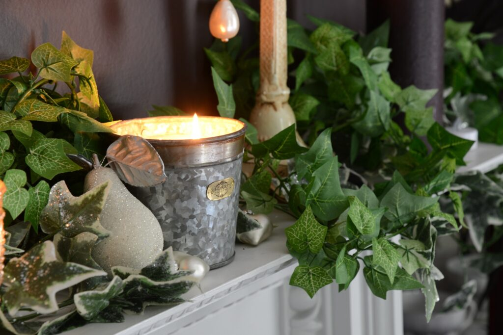 Croxton Candle wild fig and cassis