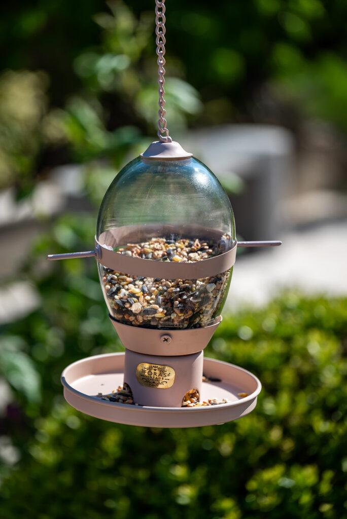 Hazel Desert Pink bird feeder