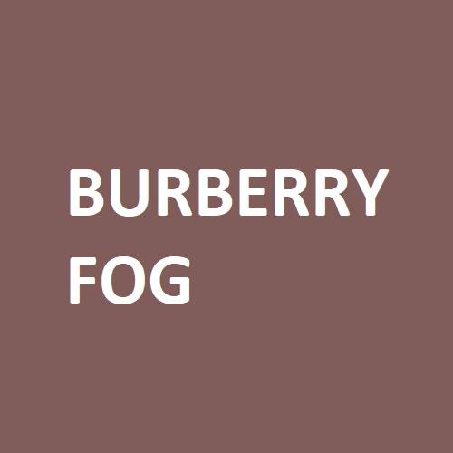 burberry fog colour swatch