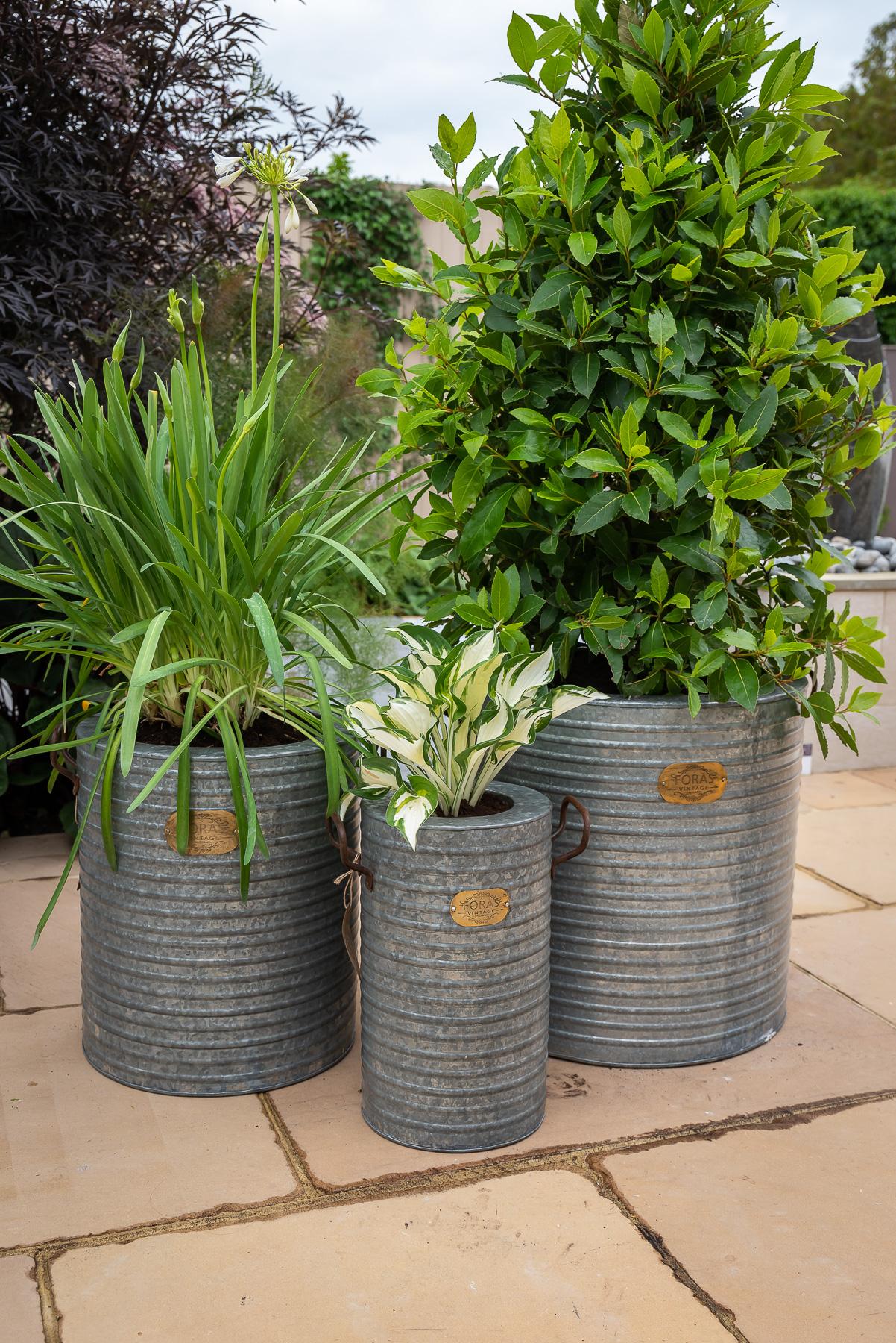 foras garden planters