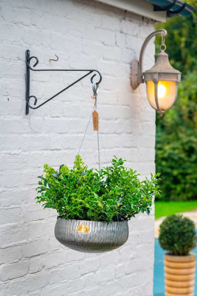 Barberry Hanging Planter