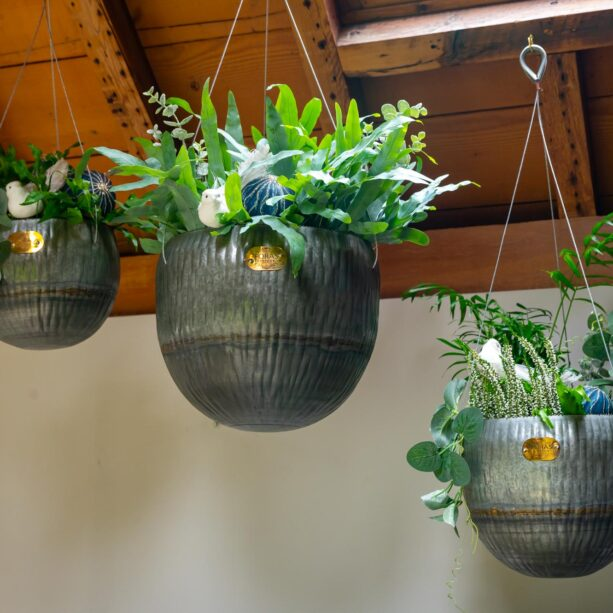Angelica Hanging Planter
