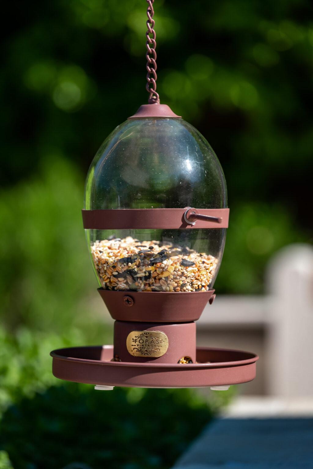 hazel bird feeder